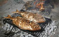 fresh grill fish