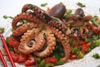 octopus directly from the Adriatic